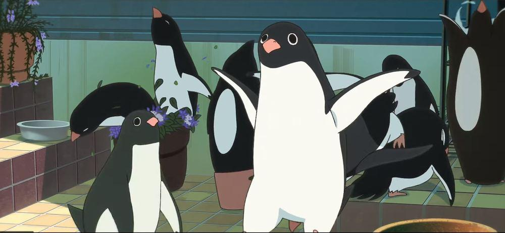Penguin highway e i pinguini